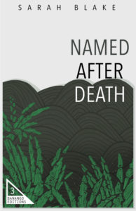 Named After Death by Sarah Blake