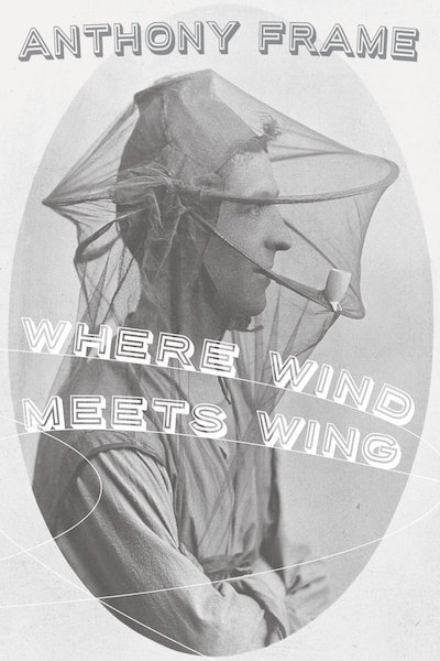 Frame-Where Wind Meets Wing