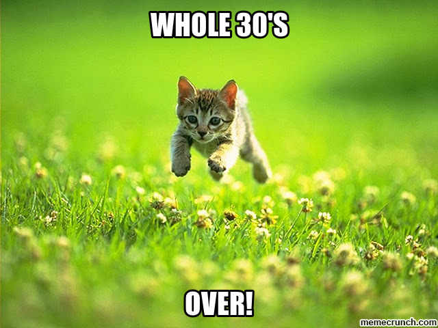 Whole30 cat meme